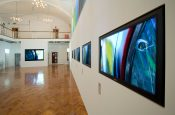 Ruskin Gallery | Snelling Business Systems 2